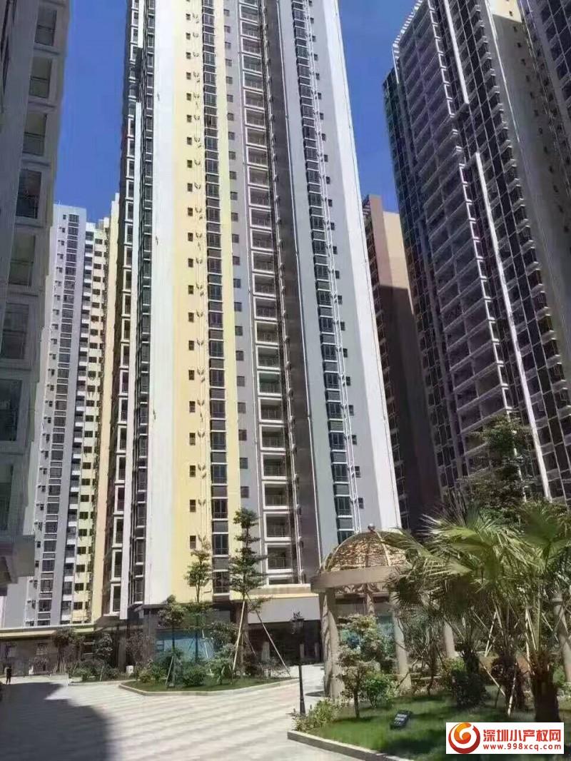 深圳最大村委统建楼火热销售中《红星花园》    推出村委保留户型