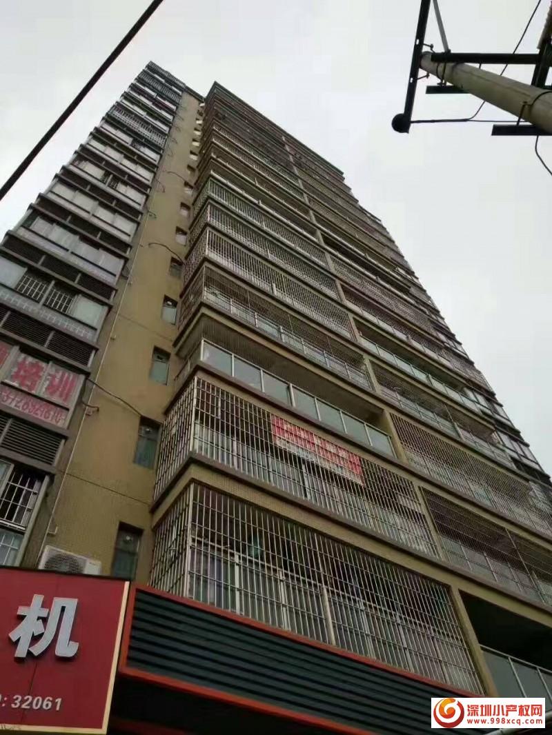 沙井小产权房最新大型村委统建楼【上沙雅居】