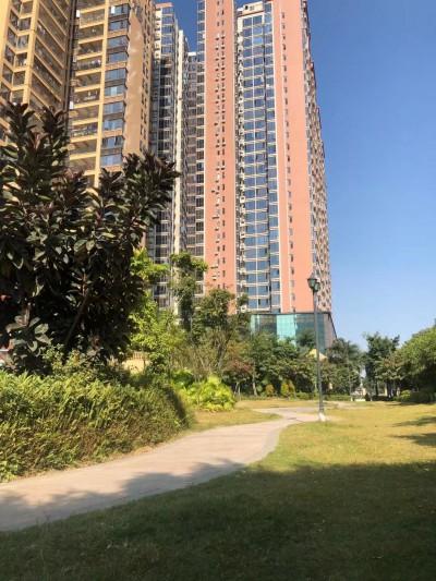龙华最大规模统建楼【幸福新城】高档商品房式园林住宅小区,最成熟的配套, 成就最完美的生活!