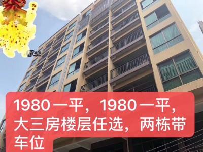东莞企石小产权房【凤凰雅苑】1980元一平方任你选 !
