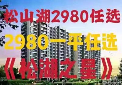 东️️️莞大朗松山湖小产权房【松湖之星】2980任选, 松山湖最便宜楼盘!