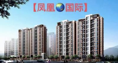 东莞凤岗280套大型统建楼【凤凰国际】首付8万8起,开发商无条件分期5年!